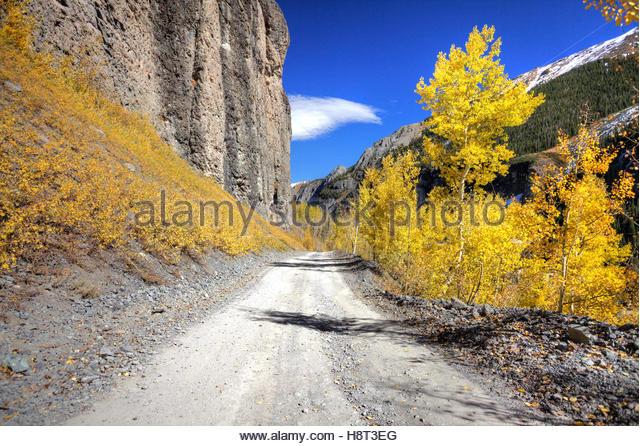 Der Weg zum Yankee Boy Becken durch Herbst gefärbten Espen. Stockbild
