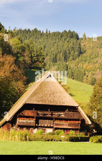Gutach (Schwarzwaldbahn): Bauernhaus Vogtsbauernhof im Freilichtmuseum Vogtsbauernhof, reetgedeckte alte Schwarzwald Stockbild