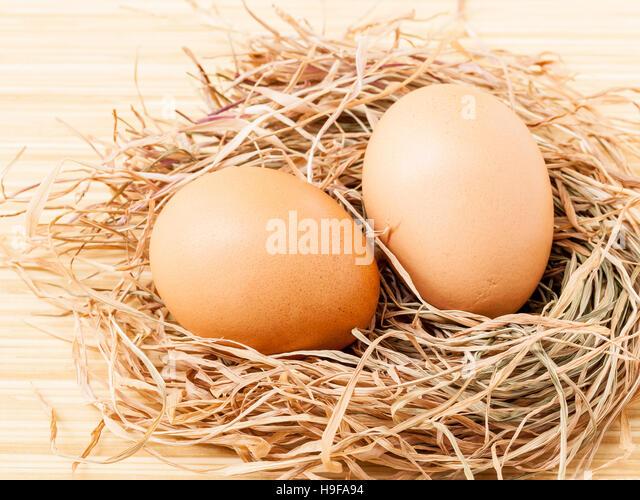 Braune Eier im Nest Heu frisch. Stockbild