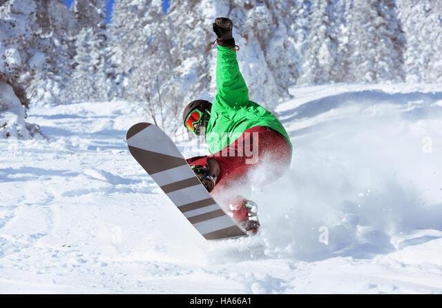 Skifahrer Snowboarder springt Freeride Wald Stockbild