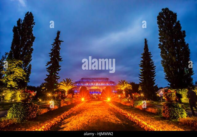 Botanischer Garten, Caribian Night, Beleuchtung, Dahlem, Berlin, Deutschland Stockbild