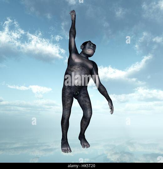 Menschenaffen, Neandertaler, Neandertaler, Urmenschen, Anthropologie, Menschen, Stockbild