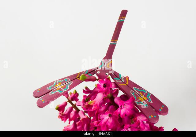 Ausgleichende Spielzeug Libelle aus Bambus gefertigt und handbemalt balancieren auf einer Hyazinthe Blume Stockbild