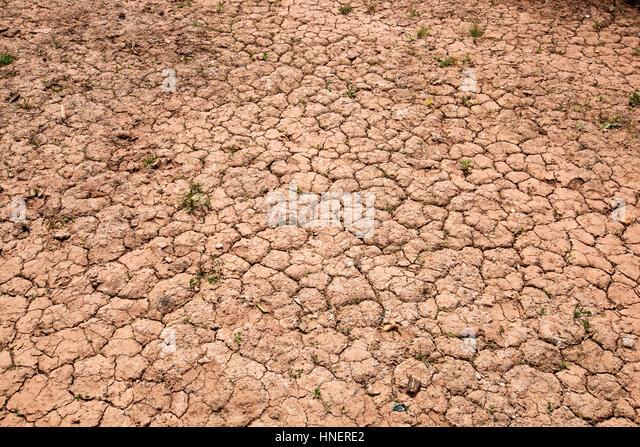 Trockene rissige rote Erde Stockbild