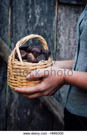 Hände halten einen Korb mit Kastanien vor einer hölzernen Tür. Stockbild