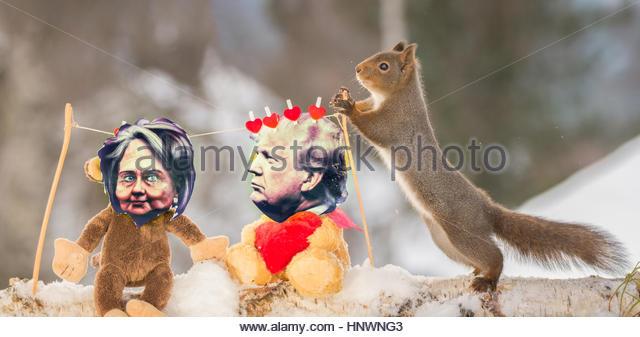 Nahaufnahme von roten Eichhörnchen stehend mit einem Pol eine Wäscheleine mit amerikanischen Politikern Stockbild