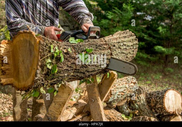 Mann mit Kettensäge Log durchschneiden Stockbild
