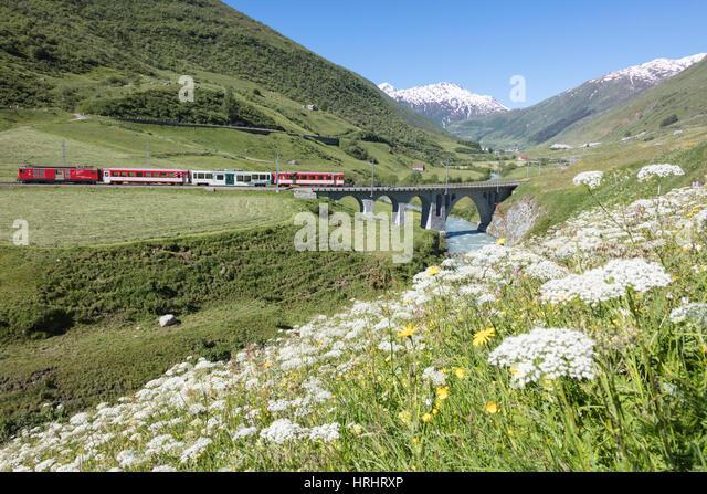 Typische rote Schweizer Schulen an Hospental Viadukt umgeben von Creek und blühenden Blumen, Andermatt, Kanton Stockbild