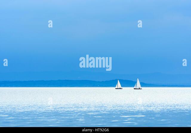 See mit Segelbooten an Weiden, Neusiedlersee, Burgenland, Österreich Stockbild