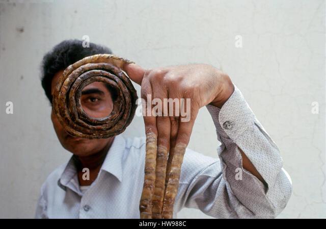 längste Fingernägel Weltrekord Indien Stockbild