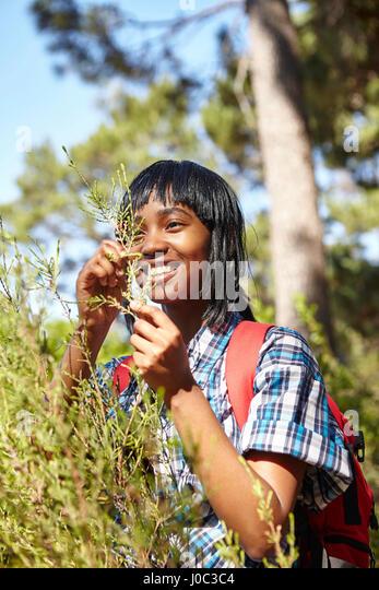 Junge Frau, Wandern, Blick auf Wildgras Stockbild