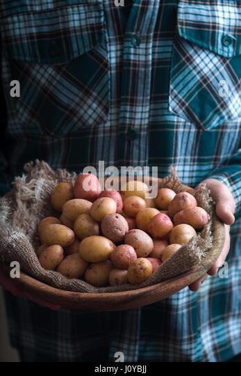 Holzteller mit rohen Kartoffeln in den Händen Stockbild