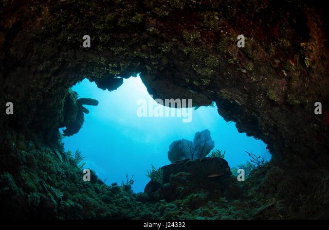 Eröffnung im Korallenriff bedeutet Mannes Erkundung der Unterwasserwelt. Stockbild