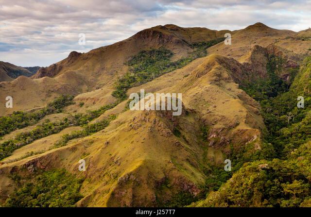 Landschaft in Altos de Campana Nationalpark, Republik Panama Stockbild