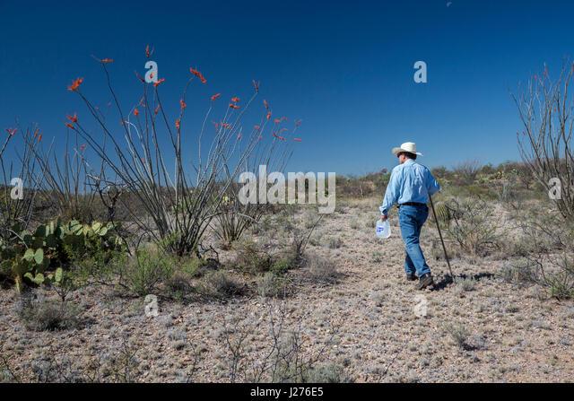 Tucson, Arizona - Pat O'Brien, ein Mitglied der Tucson Samariter, stellt Wasser in der Wüste von Arizona. Stockbild