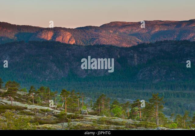 Frühling am Morgen in Nissedal, Telemark, Norwegen. Stockbild