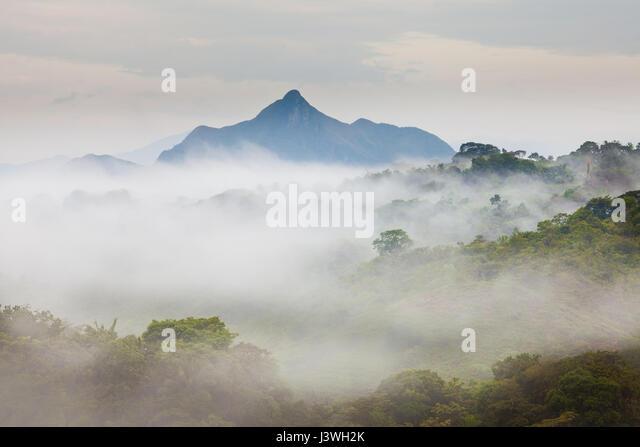 Nebligen Morgen in das Innere der Provinz Coclé, Republik von Panama. Stockbild