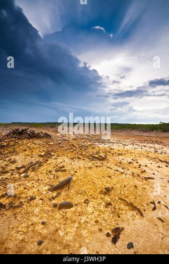 Landschaft in Sarigua Nationalpark, Herrera Provinz, Republik von Panama. Stockbild