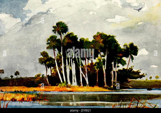 Auf dem Homossa River, Florida - Aquarell von Winslow Homer Stockbild