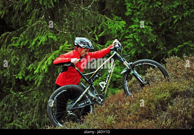 MTB im Freien, Thüringer Wald, Deutschland Stockbild