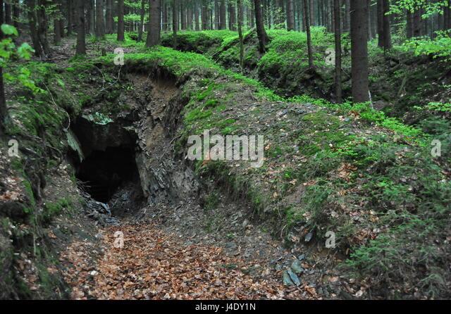 Stollen Im Thüringer Wald, Deutschland Stockbild