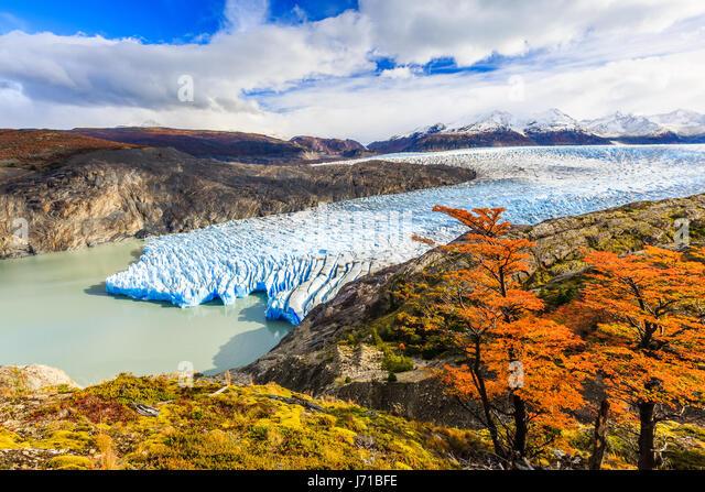 Torres Del Paine Nationalpark, Chile. Grey-Gletscher. Stockbild