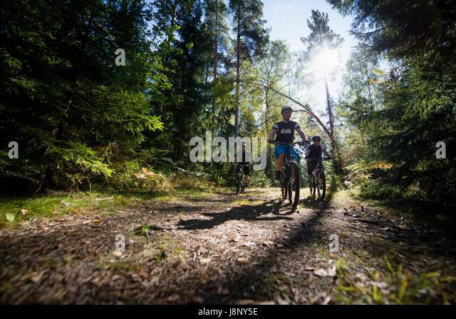 Mann Reiten Fahrrad im Wald Stockbild