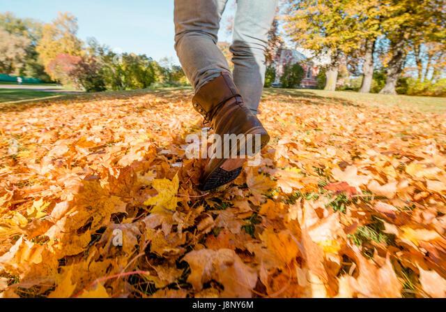 Mann in Jeans gehen im Herbst gefallenen Blätter Stockbild