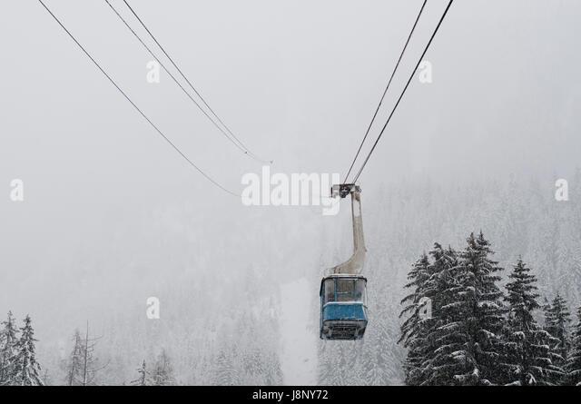 Seilbahn über Nadelbäume im winter Stockbild