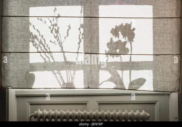 Silhouetten von Pflanzen hinter Vorhang Stockbild