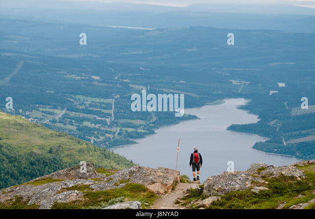 Mann, Blick auf Landschaft Stockbild