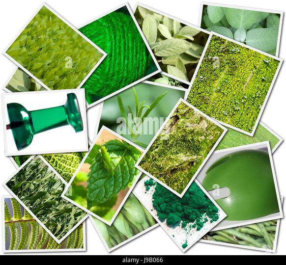 Objekt, Farbe, Collage, Fotos, Postkarten, Farbe, Bilder, Montage, Montage, Stockbild