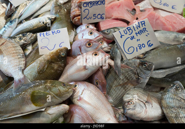 Frischer Fisch im Mercado Central de Abastos Lebensmittel Markt, Jerez De La Frontera, Cadiz Provinz, Andalusien, Stockbild