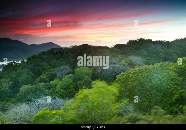 Sonnenuntergang am Gamboa, Soberania Nationalpark, Republik von Panama. Stockbild
