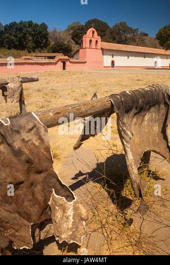 Vieh versteckt sich trocken vor der Glocke Turm und Kirche, La Purisima Mission State Historic Park, Lompoc, Kalifornien Stockbild