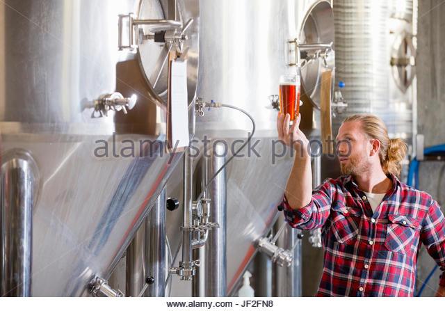 Männliche Brauerei Worker Qualitätsprüfung Bier Probe Stockbild