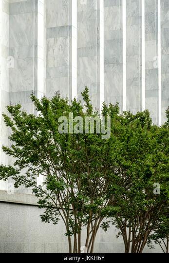 James Madison Memorial Building, Library of Congress, Unabhängigkeit Avenue, Kapitol, Washington DC Stockbild