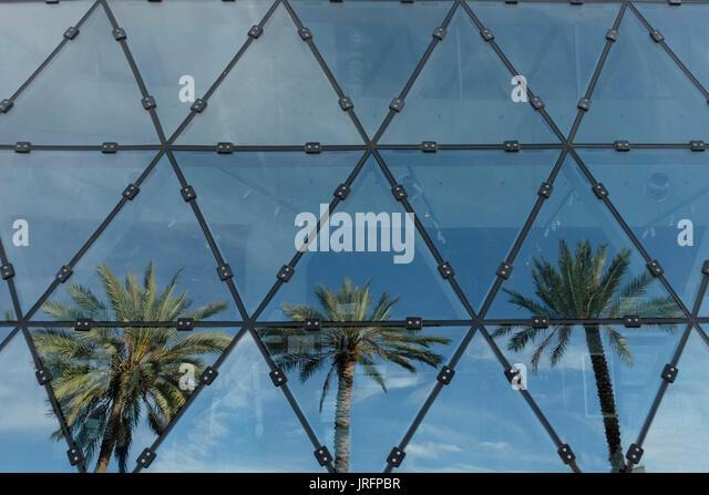 Dreieckige Fenster reflektiert drei Palmen in einem Museum in Florida, USA Stockbild