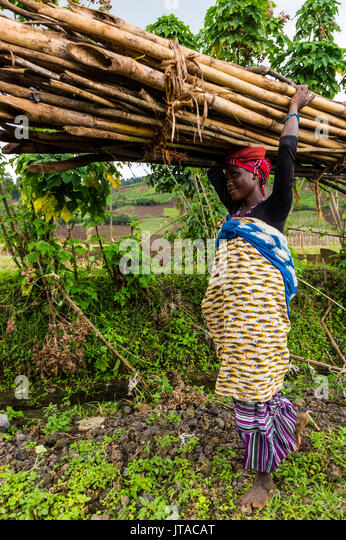 Frau, die Brennholz auf dem Kopf, Virunga National Park in der Demokratischen Republik Kongo, Afrika Stockbild