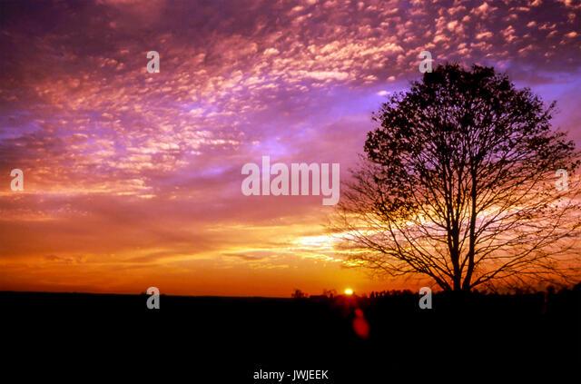 Glänzend beleuchteten ruhigen Sonnenuntergang Sonnenaufgang sonnenuntergang himmel landschaft Horizont © Stockbild