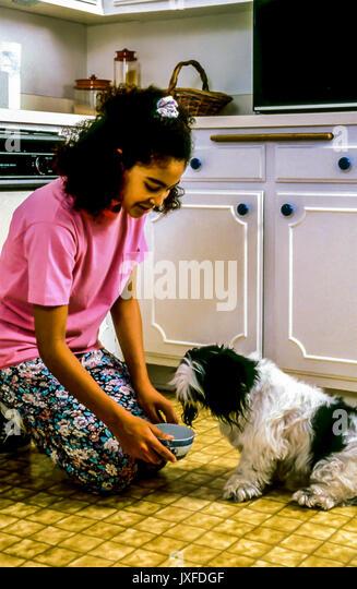 Mädchen 11-13 Jahre alt Fütterung kleiner Hund weiße Küche © Myrleen Pearson Stockbild