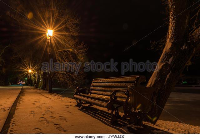 Blick auf die Bank, auf der beleuchteten Winter Park Alley in der Nacht. Erwartung. Mögliche Datum verwendet. Stockbild