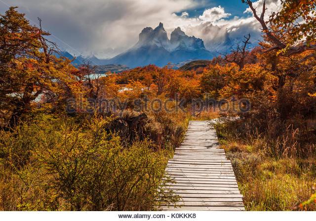 Schönen Herbst in Torres del Paine, Chile Stockbild