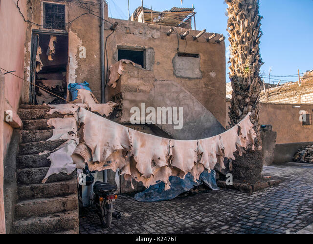 Marrakesch, Marokko: Lederhäute hängen in der Gerberei Stockbild