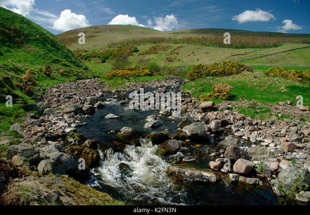Carey Brennen, Harthope, Northumberland Stockbild