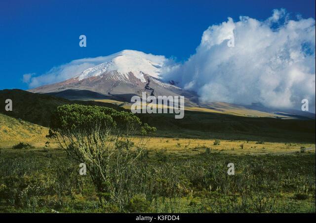Vulkan Cotopaxi (5897 m), Ecuador Stockbild