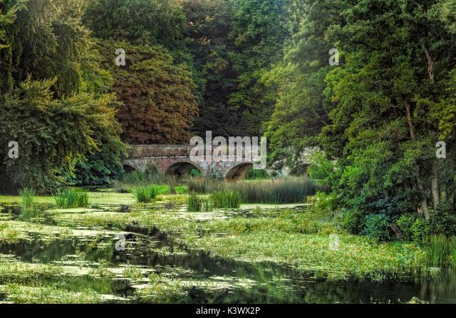 Marsh Lake, Blandford Forum, Dorset, England, Großbritannien Stockbild