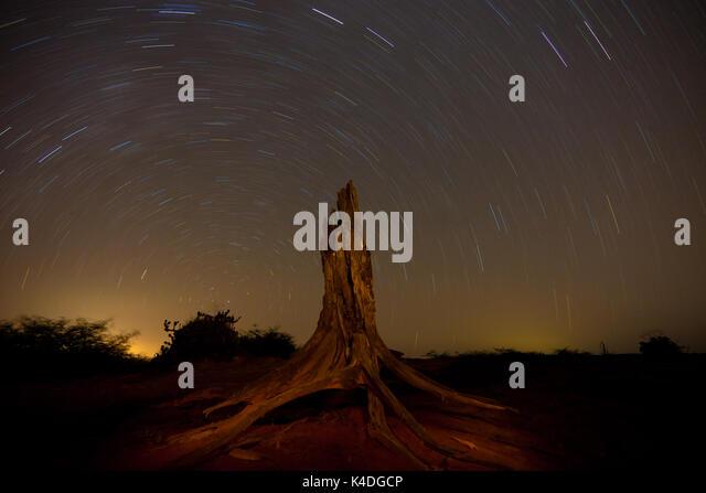 Wüste Landschaft und sternspuren in der Nacht in Sarigua Nationalpark, Herrera Provinz, Republik Panama. © Stockbild