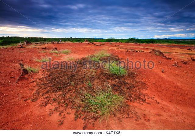 Wüstenlandschaft im Sarigua Nationalpark, Herrera Provinz, Republik von Panama. Stockbild