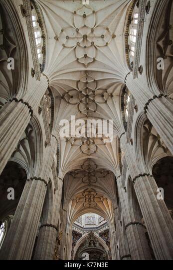 Spanien, Castilla y Leon Region, Provinz Salamanca, Salamanca, Kathedralen von Salamanca, Decke Stockbild